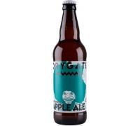 Пиво Drygate Outaspace Apple Ale 0.5 л