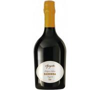 Игристое вино Spagotto Barbera IGT